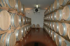 wijnproeven bij Fazi Battaglia